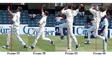 Cricket figure4