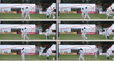 Cricket figure5
