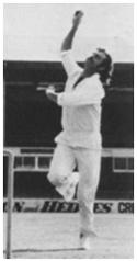 Cricket figure6a